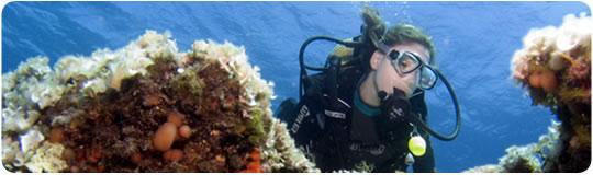 http://www.morairaonline24.com/images/cemas_diver_2.jpg